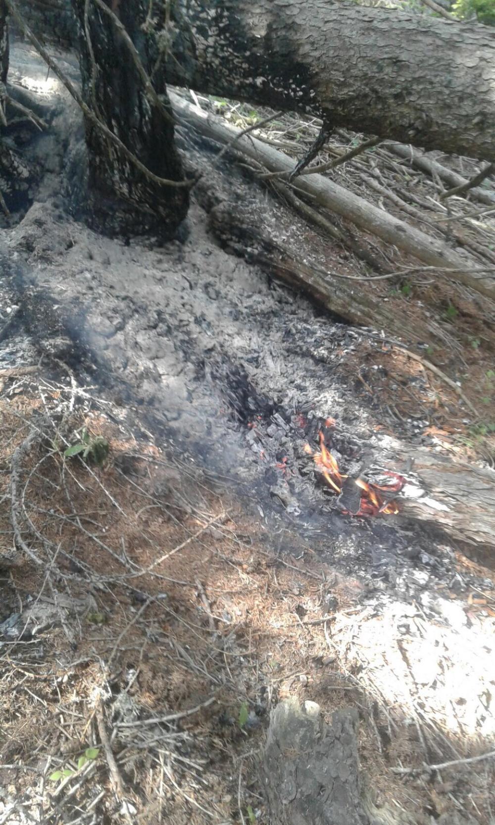 Waldbrand Weißensee